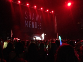 Introducing…Shawn Mendes!